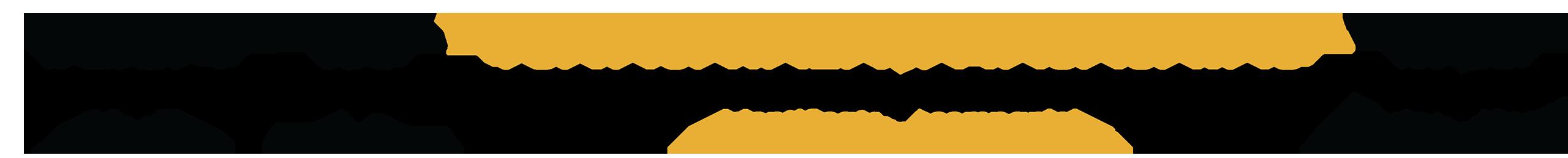 Codul LEI - ce reprezintă cifrele și literele?